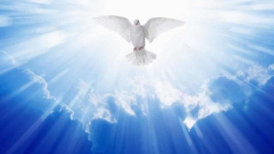 Homilía del 17 de mayo de 2020, Padre Pierre Dumoulin